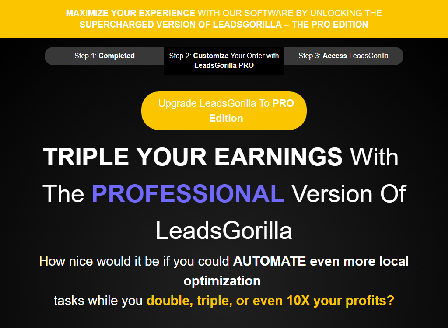 cheap LeadsGorilla Professional Monthly